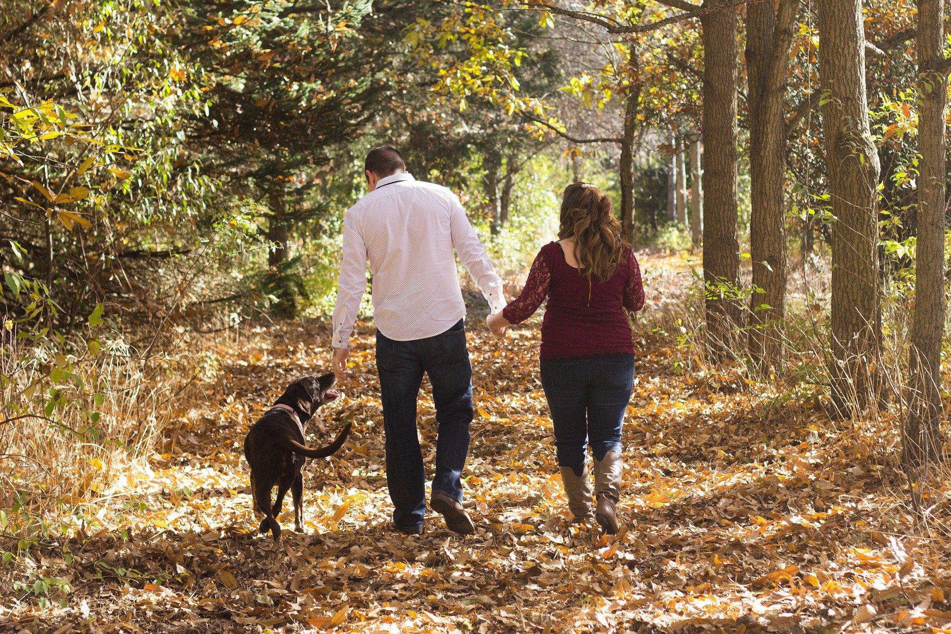 Urlaub mit Hund auf Usedom